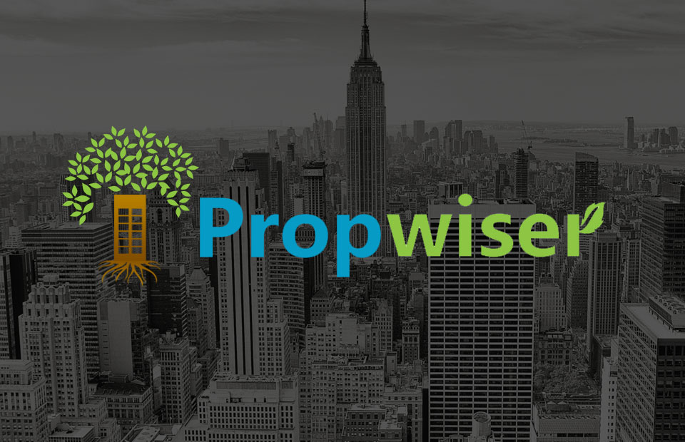 Logo design and Brand Identity for Propwiser-1