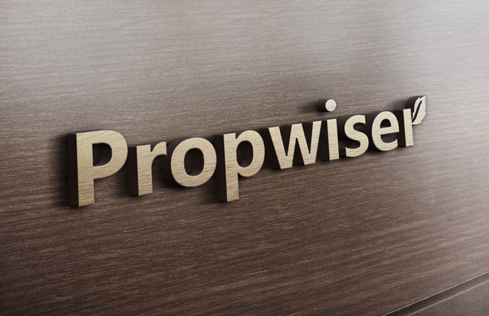 Logo design and Brand Identity for Propwiser-3
