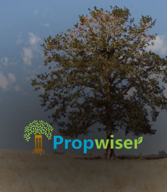 Logo design and Brand Identity for Propwiser